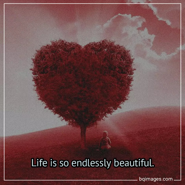 life is beautiful Images