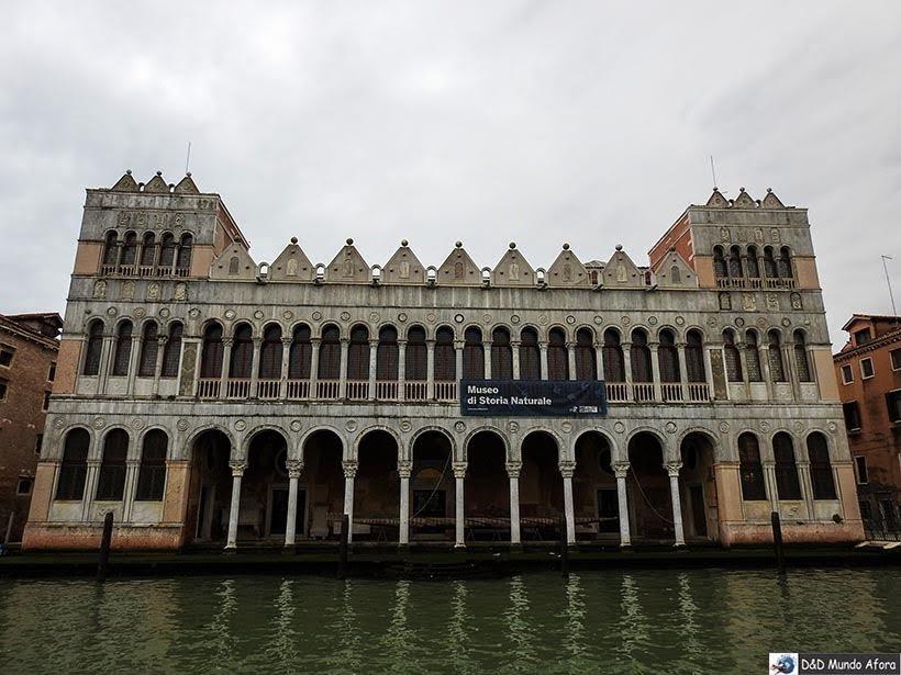 Museu de Historia Naturale - O que fazer em Veneza