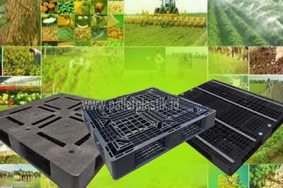 Jual Pallet Plastik Untuk Penyimpanan Hasil Pertanian