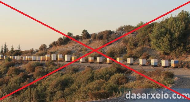 Επιστολή Melissocosmou προς τον προϊστάμενο της Διεύθυνση Δασών Αργολίδας