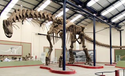 A bigly huge dinosaur has been discovered. Scientists have models but made much out of little so far. Imagine how the Master Engineer designed them!