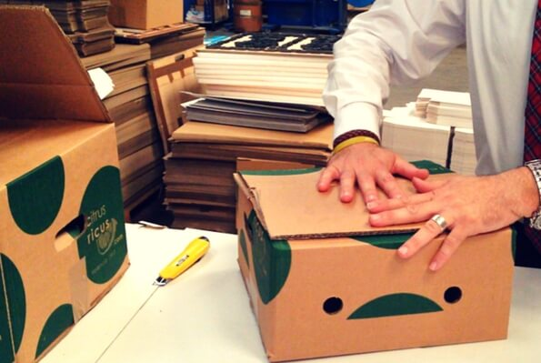 cajas para envio para fruterias online