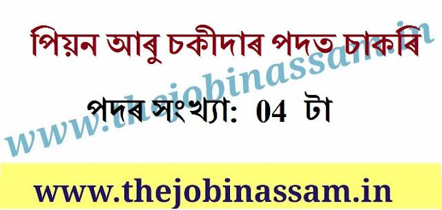 www.thejobinassam.in