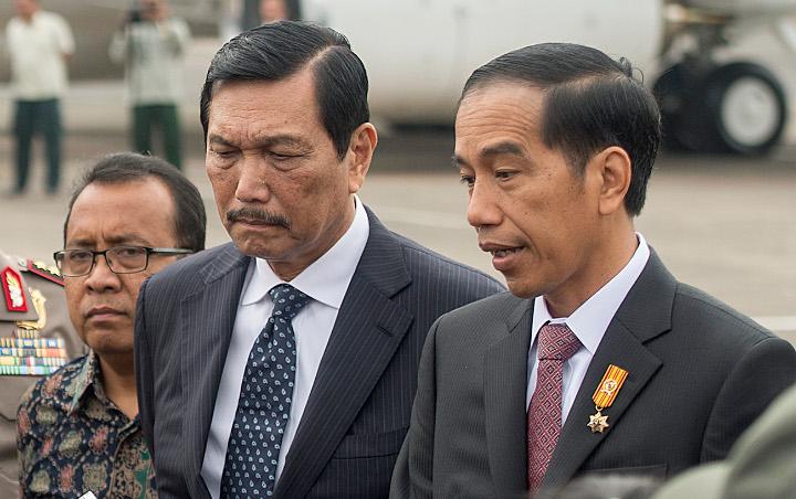 Jokowi Serahkan Kekuasaan ke Luhut, Pemerhati Politik: Kondisi Negara Sedang Chaos, Presiden Tak Mampu Tangani