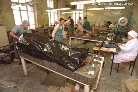 kilang-proses-organ-manusia-16.jpg