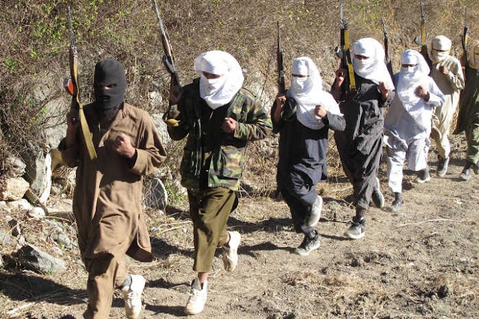 """""""Nigeria Is About To Sink"""" Mixed Reactions Trail ISIS, Al-Qaeda Infiltration Plan"""