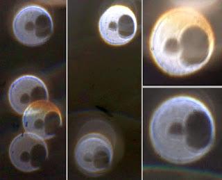 orb hole pattern