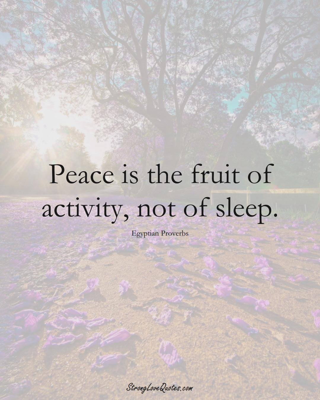 Peace is the fruit of activity, not of sleep. (Egyptian Sayings);  #MiddleEasternSayings