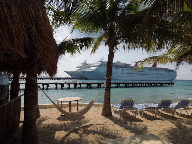 Carnival Paradise and Elation