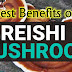 Best Benefits of Reishi Mushrooms