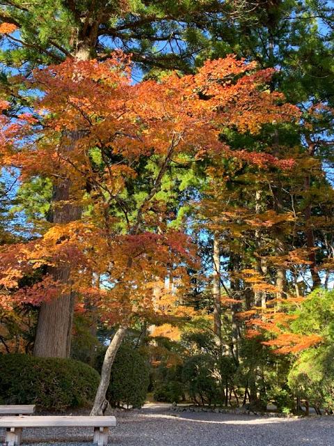 itinerario viaggio nozze Giappone