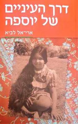 תמונת כריכת הספר - דרך העיניים של יוספה כריכת הספר דרך העיניים של יוספה צילום יחצ
