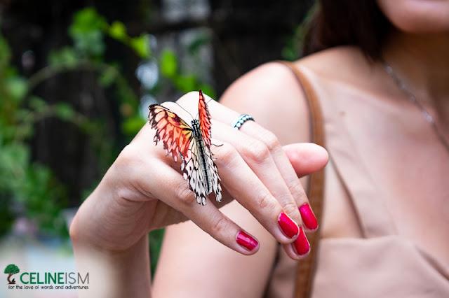 marl butterfly garden