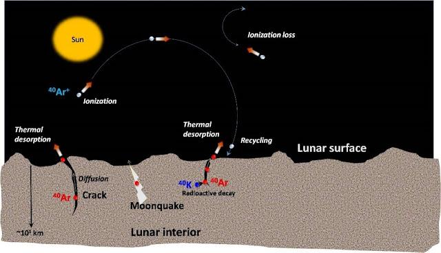 Detection of Argon-40 in the lunar exosphere