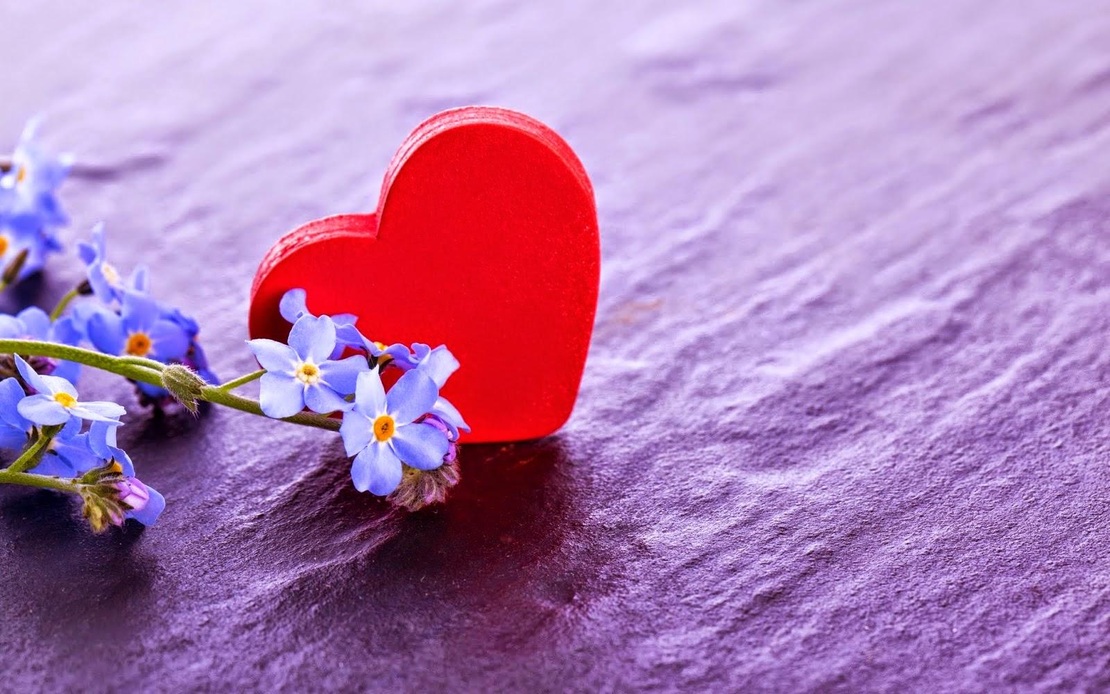 Solo Fondos De Pantalla San Valentin: Frases De Amor, Más De 250 Imágenes Para Compartir