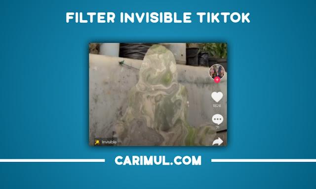 Cara Mudah Nonaktifkan Filter Invisible Tiktok