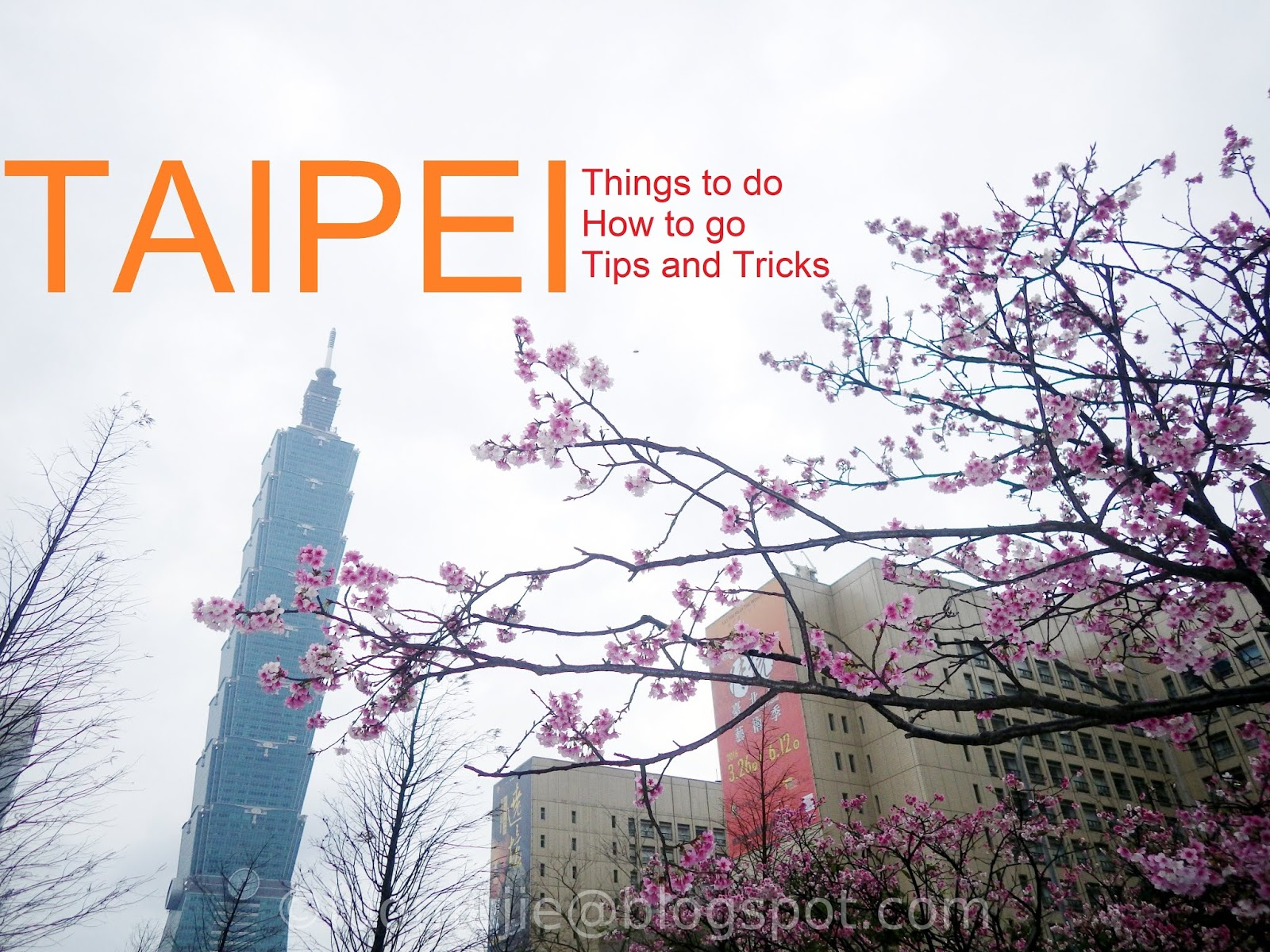 Taipei things to do