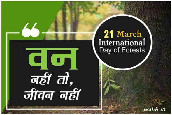 Best Forest Quotes and Forests Day Sayings