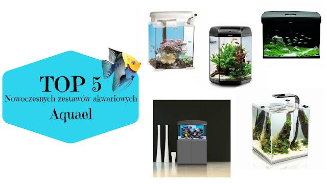 TOP 5: Nowoczesnych zestawów akwariowych | Aquael