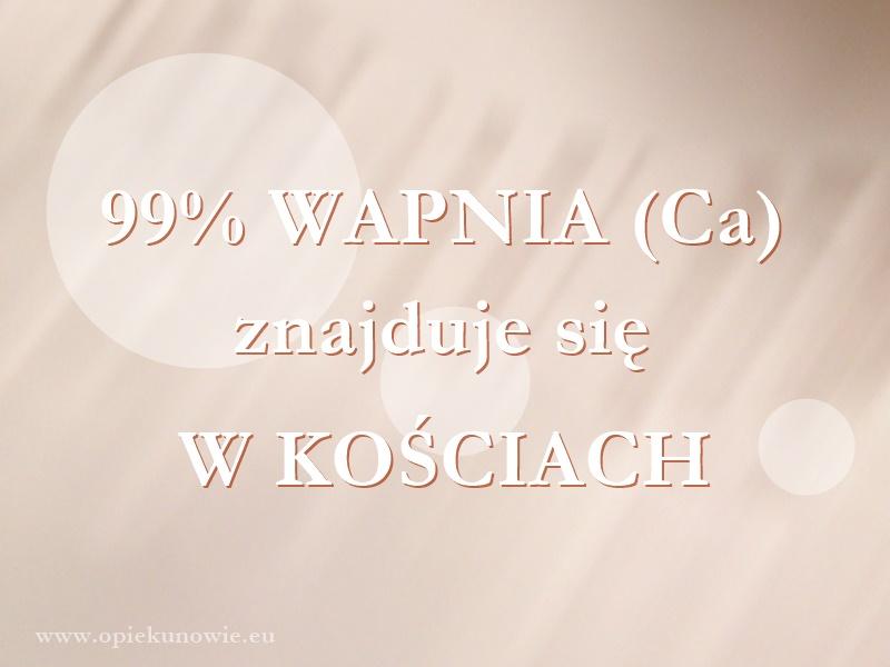 99% wapnia znajduje się w kościach