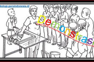 Inilah Sintaks Metode Pembelajaran Demonstrasi pada Mata Pelajaran Biologi