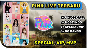Pink Live 3.1.5 - Live Stream Video Chat & Meet New Friends Mod APK