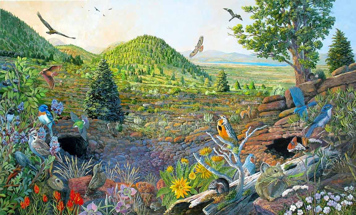 Pras Academy Sd Pengertian Ekosistem Komponen Penyusun Ekosistem