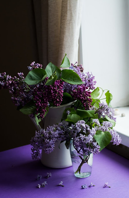 Lilacs in Vases | Photo by Juja Han via Unsplash