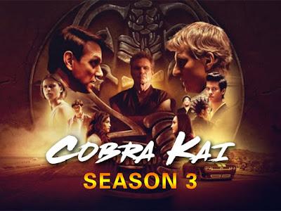 Cobra Kai (2021) Hindi Season 3 Complete Netflix Watch Online in HD Print Quality Free Download