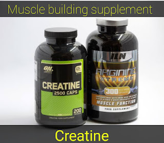 Creatine, muscle building supplement