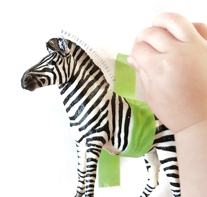 Fingers peeling green washi tape off of a plastic zebra animal figurine.