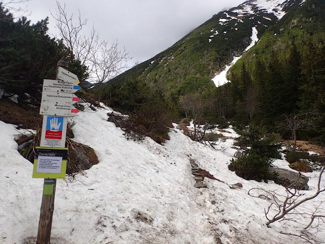 Ostatnie odejście - ceprostrada na Szpiglasową Przełęcz