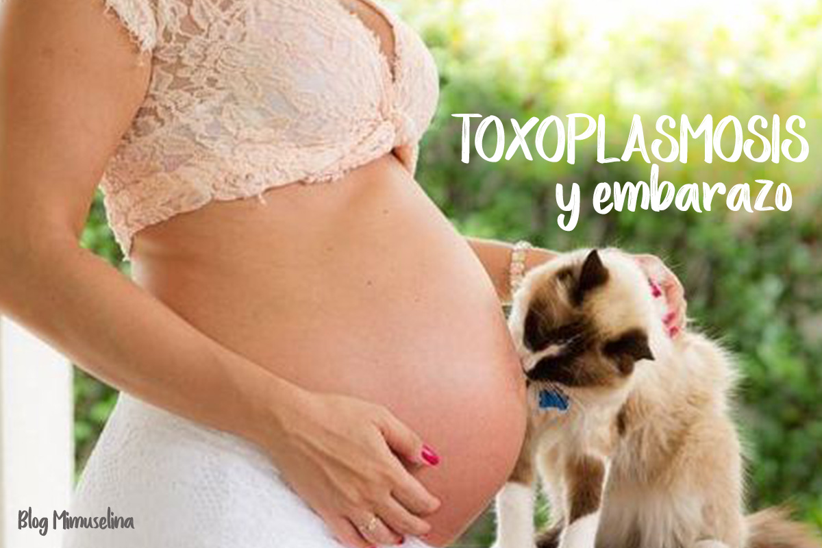 en donde se encuentra la toxoplasmosis