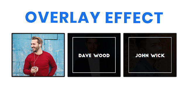 CSS Image Hover Overlay Effect | CSS Hover Effects Image