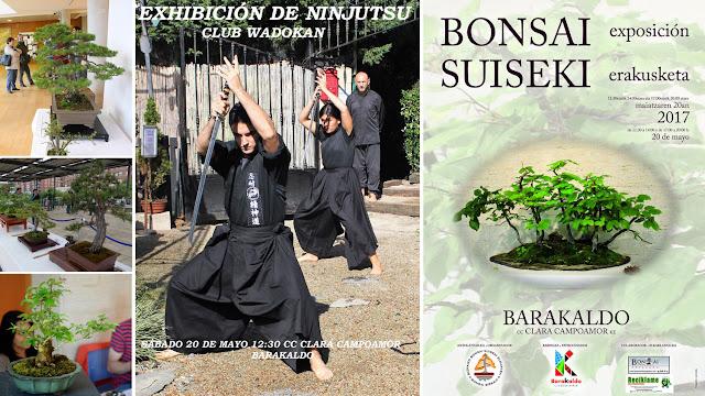 Cartel de la exposición de bonsáis