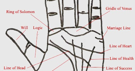 Palmistry With Diagram   INDIAN PALM READING - HASTREKHA ...