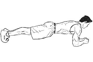 7. Plank