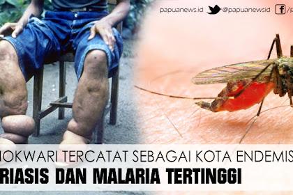 Manokwari Tercatat Sebagai Kota Endemis Filariasis Dan Malaria Tertinggi