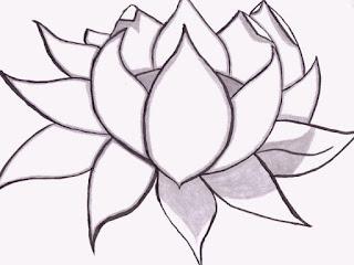 Sketsa Bunga Teratai
