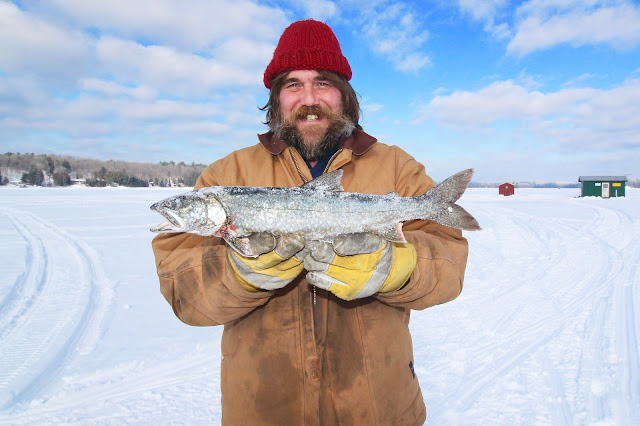 Cómo descongelar un pescado correctamente.