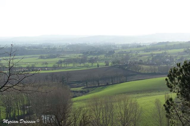 Collines du Pays de Cocagne, sud du Tarn
