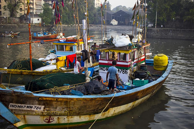 fishing boats, fishermen, arabian sea, sassoon docks, mumbai, incredible india, winding up,