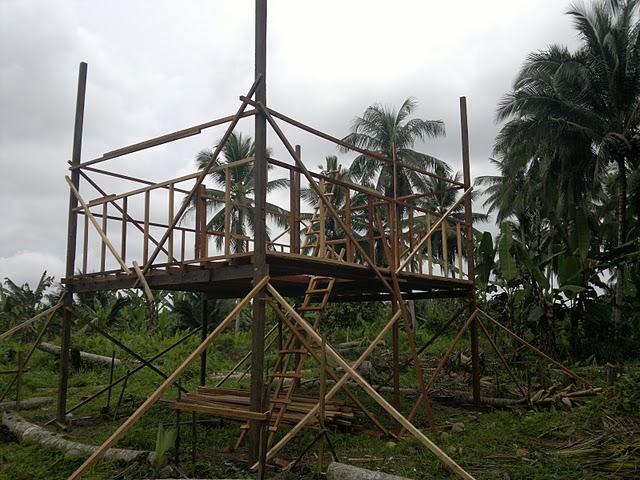 Pengalaman Saya Pembinaan Rumah Dan Penternakan Burung