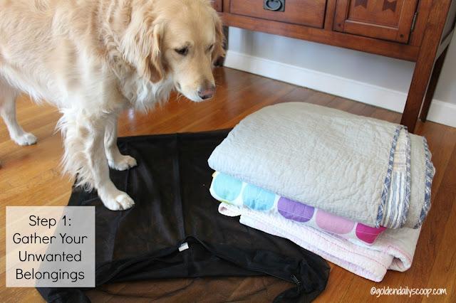 golden retriever dog with molly mutt dog bed duvet