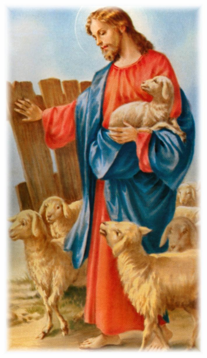 New Testament Gospel Doctrine The Good Shepherd