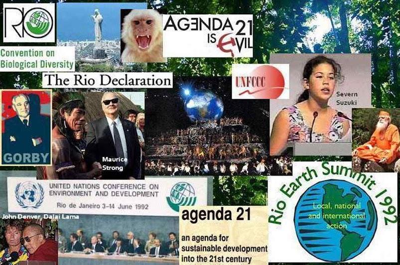 Num cenário caótico, os potentados do planeta deram o empurrão de partida rumo a um mundo anárquico e panteísta agora proposto pelo Sínodo Amazônico