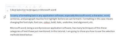 Selection bar-microsoft word