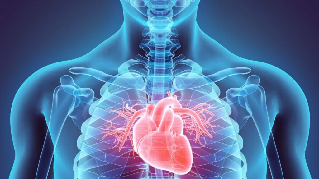 Cresce número de óbitos por doenças cardíacas no Brasil