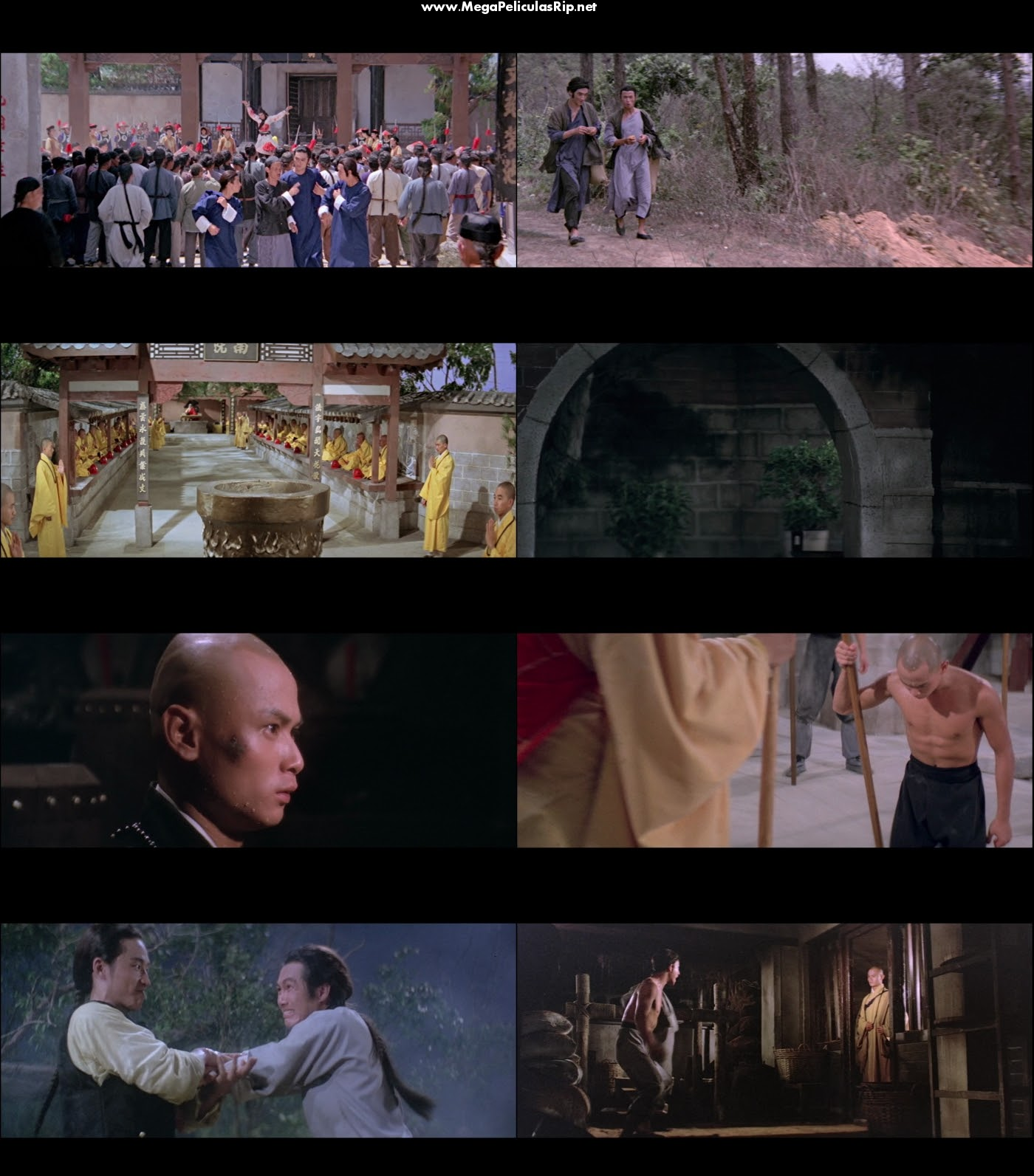 La Camara 36 De Shaolin 1080p Latino
