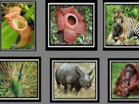 Kliping Tentang Flora dan Fauna Negara ASEAN Lengkap